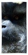 Monkey Stare Bath Towel