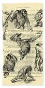 Monkeys Black And White Illustration Hand Towel
