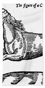 Monster Bath Towel