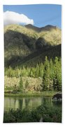 Moose In The Elk Creek Beaver Ponds Bath Towel