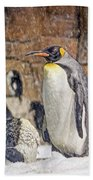 More Snow - King Penguin Bath Towel