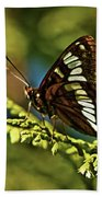 Mormon Metalmark Bath Towel