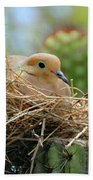 Mourning Dove Nest In A Cactus Bath Towel