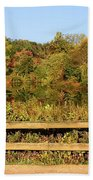 Morning Landscape In The Park Hand Towel