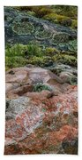 Moss And Lichen Abstract Bath Towel