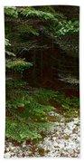 Moss And Lichen Bath Towel