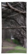 Moss Beach Trees 4191 Hand Towel