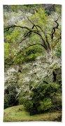 Moss Covered Tree Bath Towel