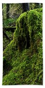 Moss Covered Tree Stump Bath Towel