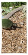 Moss Covered Turtle Bath Towel