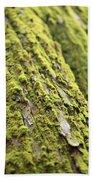 Moss On A Cedar Bath Towel