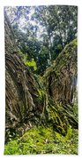 Mossy Old Tree Bath Towel