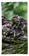 Mossy Tree Knot Bath Towel