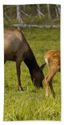 Mother Elk And Fawn Bath Towel