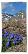 Mount Holy Cross With Wildflowers 2 Bath Towel