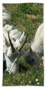Mountain Goats Bath Towel