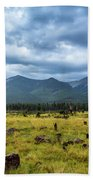 Mountain View After Rain Hand Towel