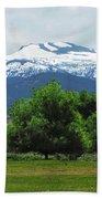 Mountain View - Reno Nevada Bath Towel