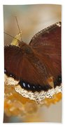 Mourning Cloak Butterfly Hand Towel