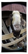 Mr B Goat Bath Towel