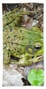 Mr. Perfectfrog Hand Towel