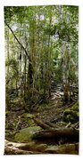 Mt Field Forest Bath Towel