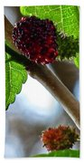 Mulberry Season Bath Towel