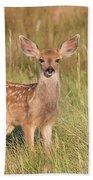 Mule Deer Fawn Is All Ears Bath Towel
