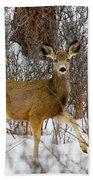 Mule Deer Portrait In Heavy Snow Bath Towel