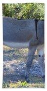 Mule In The Pasture Bath Towel