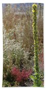Mullin And Other Springtime Wildflowers Bath Towel