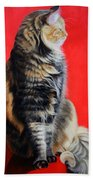 Multicolored Cat In Red Background  Bath Towel