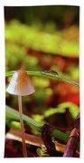 Mushroom Hand Towel