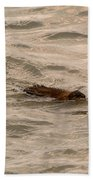Muskrat In Lake Bath Towel