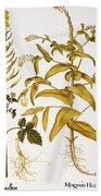 Mustard Plant, 1613 Bath Towel