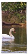 Mute Swan     Image 2      Spring        St. Joe River          Indiana Bath Towel
