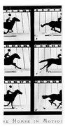 Muybridge: Horse Bath Towel