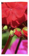 My Beautiful Geraniums And Buds - Images From The Garden Bath Towel