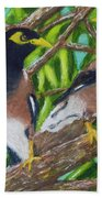 Mynah Birds #474 Hand Towel