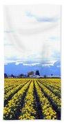 Myriads Of Daffodils Bath Towel