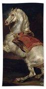 Napoleon's Stallion Tamerlan Bath Towel