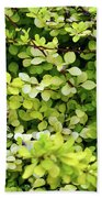 Natural Background With Small Yellow Green Leaves. Bath Towel