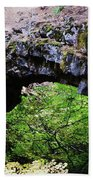 Natural Bridge  Bath Towel