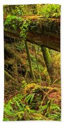 Nature's Bridge Bath Towel