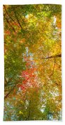Natures Canopy Of Color Bath Towel