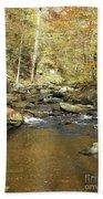 Nature's Finest 5 - Ricketts Glen Bath Towel