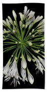 Natures Fireworks - Lily Of The Nile 005 Bath Towel