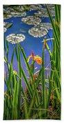 Nature's Window #h5 Bath Towel by Leif Sohlman