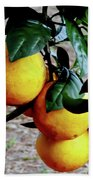 Naval Oranges On The Tree Bath Towel