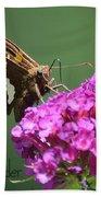 Nectaring Moth Bath Towel
